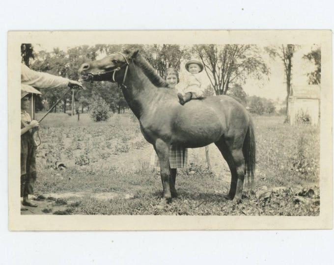 Vintage Snapshot Photo: Small Boy on Horse, c1920s [81644]