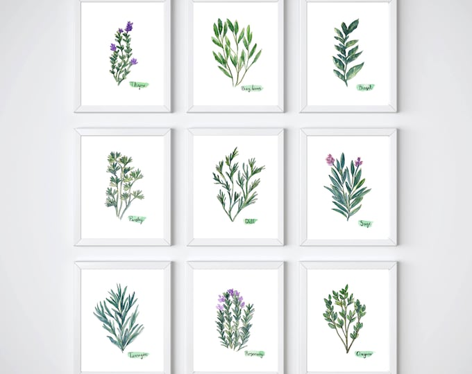 Herb Collection Set of 9 Prints, Green Herb Watercolor Painting, Sage, Rosemary, Parsley, Basil, Oregano, Tarragon, Dill, Bay Leaves, Herbal