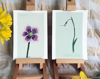 Pic'n'mix Flower Power Fund print sets