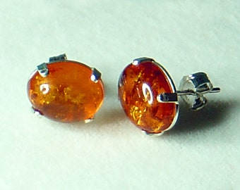 Baltic Amber Oval Cabochon Earrings