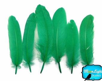 Feathers, 1 Pack - Kelly Green Goose Satinettes loose feathers 0.3 oz. : 146