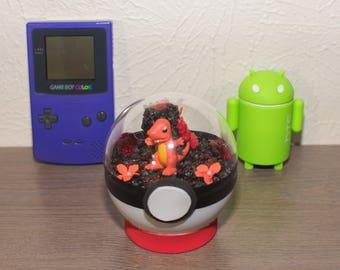Pokemon Pokeball: Charmander