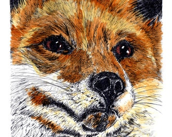 Red Fox Note Cards