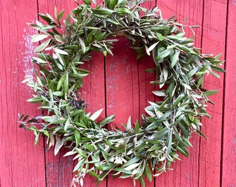 Spring Wreath with Fresh Olive Branches- 14""