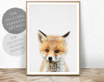 Baby Fox Print, Baby Animal Poster, Woodlands Nursery Decor, Large Photo Poster, Minimalist, Large Wall Art, Babies Room Fox Art, Printed