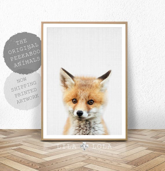 Baby Fox Print, Baby Animal Poster, Woodlands Nursery Decor, Large Photo Poster, Minimalist, Large Wall Art, Babies Room Fox Art, Printed