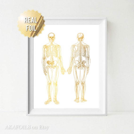 Greys Anatomy Medical Student Gifts Gold Foil Print