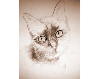 Kunstdruck einer Bleistift-Zeichnung, Sepia-Farbvariante  - Nicky (21 x 30 cm)