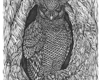 """Digital download-Printable PDF-Coloring Page-Adult Coloring-Printable Wall Art-Art print-Hand-Drawn """"The Great Horned Night Owl"""""""