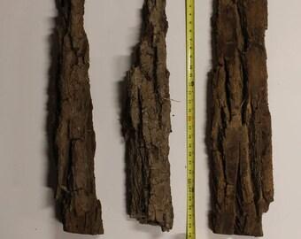 Cottonwood bark, 3 large pieces
