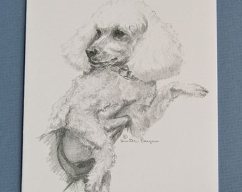 Poodle note cards, set of 6 with envelopes, direct from artist