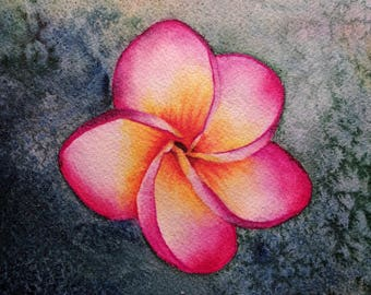 """Frangipani, fine art giclee reproduction of an original watercolor painting by Meike Geisler, 7.5"""" x 10"""", plumeria flower, pink,yellow,red"""