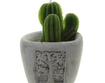 Candle Cactus Garden in mini flower pot