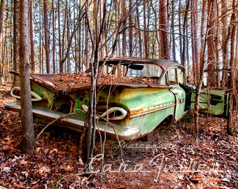 1959 Chevy Impala in the Woods Photograph