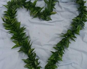 Big Kahuna fresh ti leaf lei-ti leaf lei-groom lei-hawaiian lei-birthday lei-flower lei-wedding lei-fresh flower lei