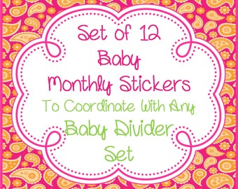 Set of 12 Baby Boy Girl  Monthly Milestone Stickers Photo Prop to Coordinate with any of my Baby Closet Divider Sets