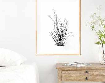 Botanical Print - Botanical Wall Art Print - Botanical Wall Art - Minimalist - Fine Art Photography - Neutral Wall Decor - White Wall Art