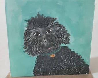 Labradoodle Dog Greetings Card