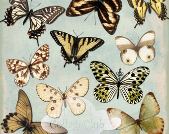 Butterfly Images Digital Collage Sheet Shabby Chic Butterflies Clipart Clip Art Cardmaking Scrapbooking Decoupage Paper Instant Download