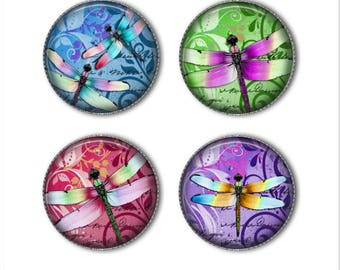 Dragonfly magnets or dragonfly pins, colorful magnets pins, dragonflies, refrigerator magnets, fridge magnets, office magnets