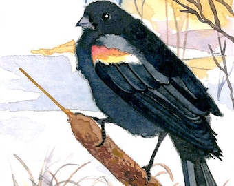 ACEO Limited Edition - Red-winged blackbird in winter swamp