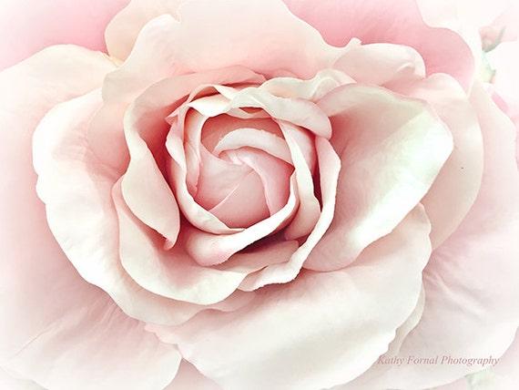 roses photography pink pastel rose pink roses print dreamy. Black Bedroom Furniture Sets. Home Design Ideas