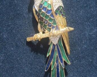 D'Orlan Parrot brooch