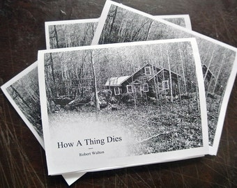 How a Thing Dies - photo-illustrated zine