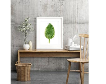 Green Leaf Art Print of Botanical Watercolor Painting, Plant Leaf Wall Art For Living Room, Tropical Leaf, Zen Wall Art for Spa Bathroom