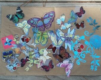 Butterflies, Dragonflies and a little more Destash
