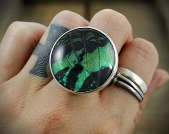 Sterling Ring with Quartz and Naturally Shed Peacock Butterfly Wing - MADE TO ORDER