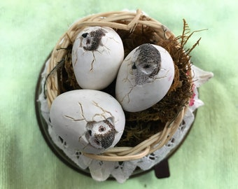 Baby Owls Hatching in Nest Vintage Music Box