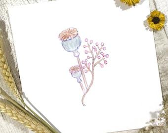 Poppy Pod Print