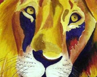Lion portrait 8x10 Print