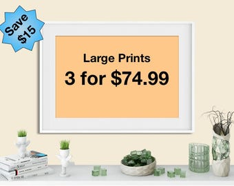 Any 3 large art prints at special discount