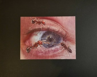 In The Eye of the Beholder - Limited Edition Signed and Numbered Print