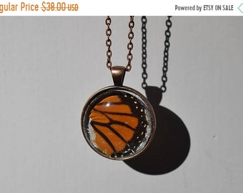 ON SALE Real Butterfly Wings Necklace