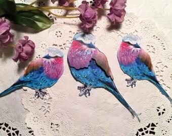 Lilac Breasted Roller Bird Cardstock Embellishments DarlingArtByValeri Butterflythre Set of 3 Scrapbooking Handmade Mini Albums Card Making