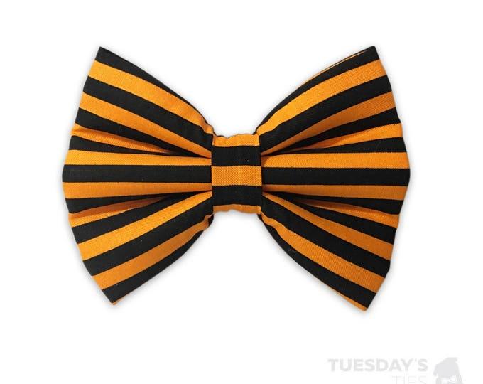 Spooky Stripes