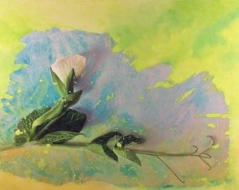 Snap Pea, mixed-media painting. Botanical Energy Aura Art by Laura den Hertog