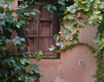 French Window with Leafy Vines