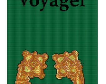 Voyager Wall hanger
