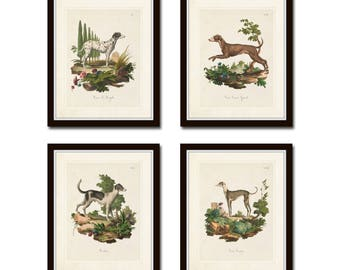 Vintage French Dogs Print Set No. 1, Vintage Dog Prints, Giclee, French Style Prints, Art Print, Wall Art, Print Sets