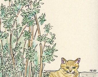 Cat original drawing - P010July2016