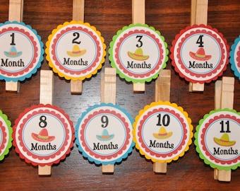 cinco de mayo. Photo Clips. First Birthday. Photo Banner. Fiesta. Sombrero. Newborn to 12 months