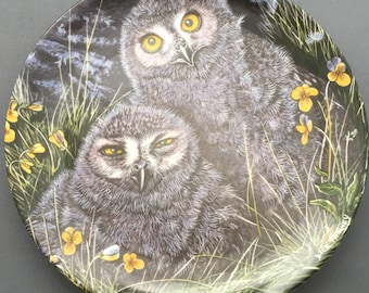 Wedgwood The Baby Owls Snowy Owl Chicks Collectors Plate
