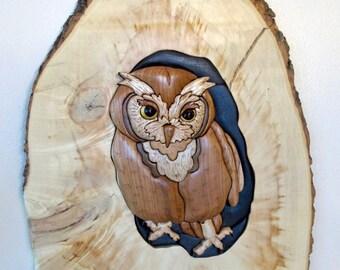 Screech Owl on a Box Elder slab