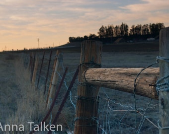 Barn Fence Photograph