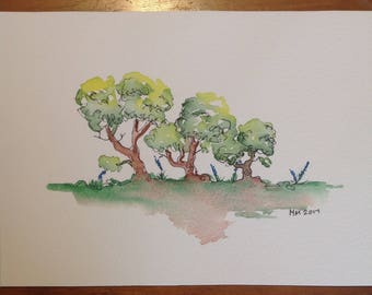 Small stand of gumtrees