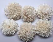 Sola Zinnia Flowers---  Set of 6 Sola Zinnia Flowers-- Wedding balsa flowers